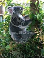 Koala_Bear_1.jpg