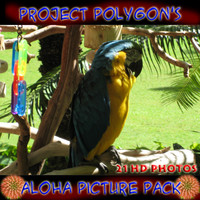 "Project Polygon""s Aloha Animals"