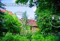 THE ABANDON HOUSES
