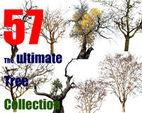 The Ultimate Tree Collection 3