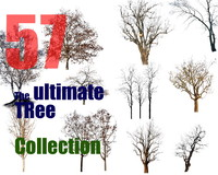 The Ultimate Tree Collection 9