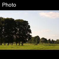 Dutch landscape 8