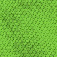 greenreptile.jpg