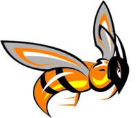 Custom Hornet Logo