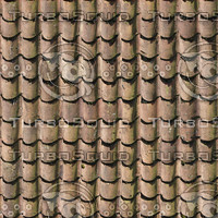 roof19.jpg