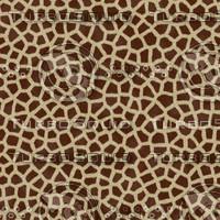 Seamless Giraffe Fur Textures.rar
