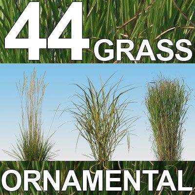44 Ornamental Grass Textures