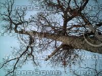 PICT0815.JPG