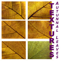 leaves_textures