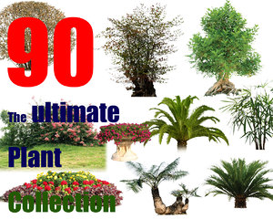 The Ultimate Tree Collection 5