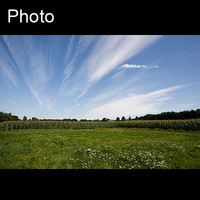 Dutch landscape 6
