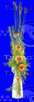 plant_045.jpg