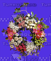 plant_050.jpg