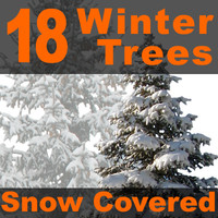 18 Snow Covered Winter Trees