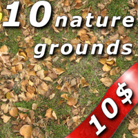 10 Nature Ground Textures for 10 $