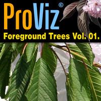 3dRender Pro-Viz Foregound Trees Vol. 01