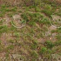 Ground_grass_11.zip