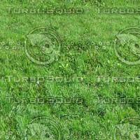 Ground_grass_13.zip