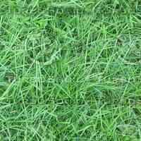 Ground_grass_06.zip