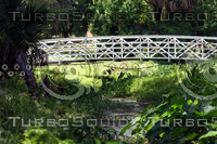Park Bridge.jpg