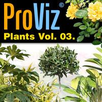 3dRender Pro-Viz Plants Vol. 03