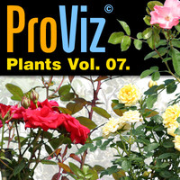 3dRender Pro-Viz Plants Vol. 07