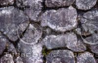 Cobble stone moss