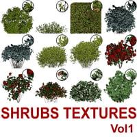 Cut-out Shrubs Vol1
