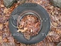 Tire In Leaves.JPG