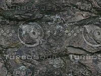 boulder texture 1.jpg