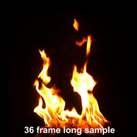 Campfire looping sequence 111 frames
