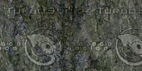 cliff texture 29.jpg