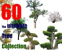 The Ultimate Tree Collection 2