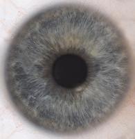 Iris HD Texture