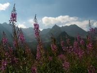 mountains_photo_22.jpg