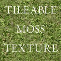 Tileable Moss Texture