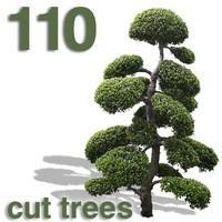 Cut Out Plants Cut