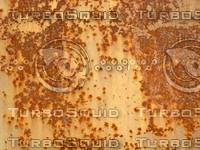 Rust    20090103 038