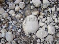 Pebble 20090110 084