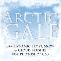 ArcticGale Photoshop CS3 Brushes