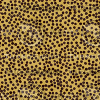 Cheetah Fur Textures.rar