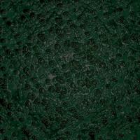 green skin.jpg