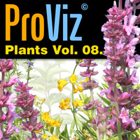 3dRender Pro-Viz Plants Vol. 08