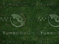 Texture00176.jpg