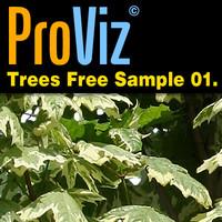 3dRender Pro-Viz Trees Free Sample 01
