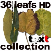 HD Leaf Collection 1.1