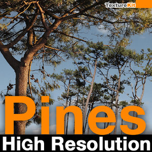 Pines High Resolution