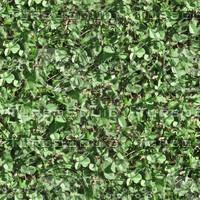 Tilable Grass