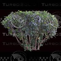 tree-02-20