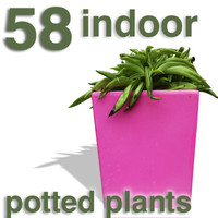 Cut Out - 58 indoor plants